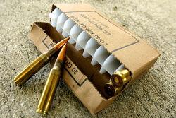 7.62mm AN Cartridge