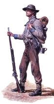 Militia Force