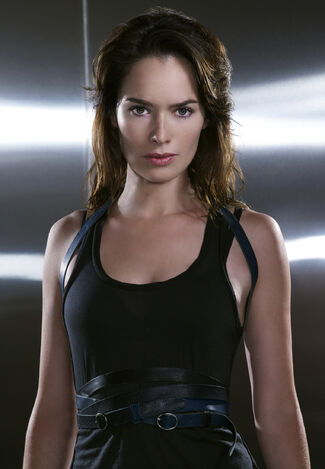 Terminator-the-sarah-connor-chronicles-lena-headey-4533486-1523-2200
