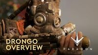 Paragon - Drongo Overview