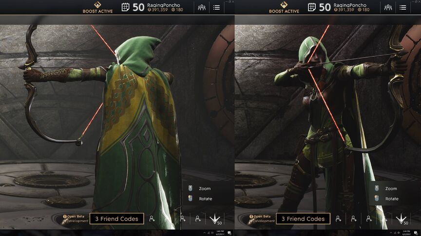 Sparrow Forest Rogue skin