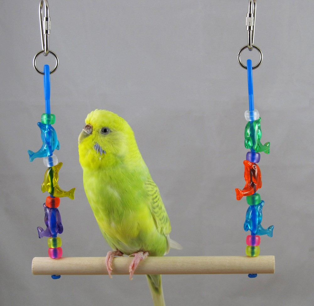 Homemade Parakeet Toys Parakeet Wiki Fandom Powered By Wikia