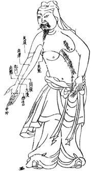 Akupunktiokartta