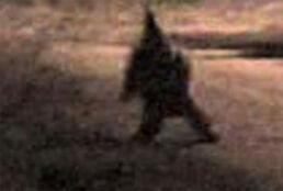 Argentina-gnome