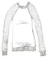 Heidi Smith clothes 05