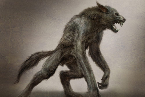 Werewolf Parapedia Wiki Fandom Powered By Wikia