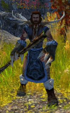 Norseman Druid