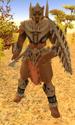 Dustrider Warrior