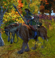 Norseman Eusmilus Rider