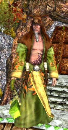 Arch Druid Hero