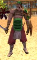 Dragon Clan Samurai Pirate