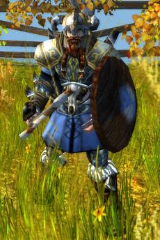 Norseman Warrior