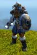 Norseman Jetpack Warrior