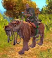 Dragon Clan Eusmilus Rider