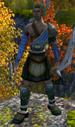 Norseman Archer