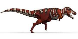 T.rexus