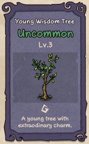 3 - Young Wisdom Tree