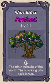 11 - Wise Elder