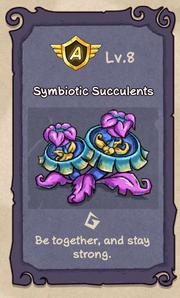 Succulents 8