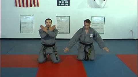 Martial Arts Basic Break Falls as Taught by Ji Han Jae
