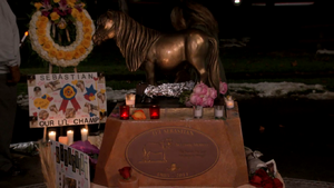 Lil Sebastian Memorial