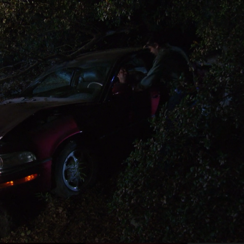 Ron's Buick after Tom crashes it into a tree