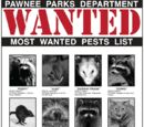 Pawnee Parks Department Most Wanted Pests List