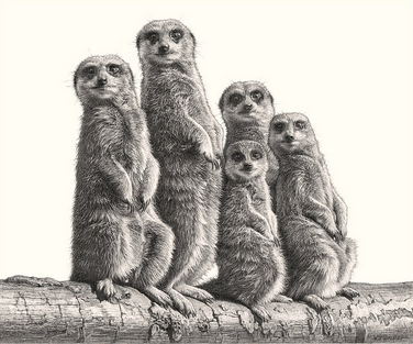 Animal-Pencil-Drawing-5