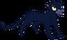 Zelda the Kind Panther