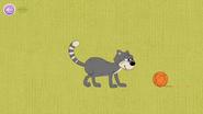 Alive Cat