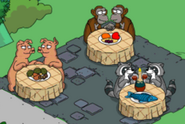 Pigs Raccoons Chimps 2019