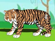 Rileys Adventures Indochinese Tiger