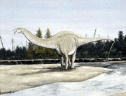 Apatosaurus-encyclopedia-3dda