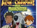 Ash Ketchum and The Pokemon Trainers Meet Frankenstein