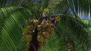 Madagascar-disneyscreencaps.com-7643