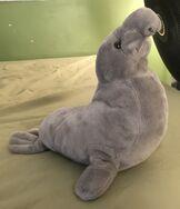 Easy the Elephant Seal