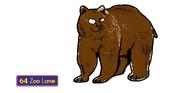 Boris the Grizzly Bear
