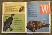 The Dictionary of Ordinary Extraordinary Animals (53)