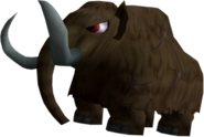 DKBB Mammoth