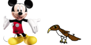 Mickey-mouse-meets-red-tailed-hawk