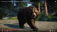 Planet Zoo Bear