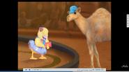 Wonder Pets Camel