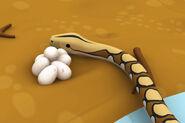 LTWR Reticulated Python