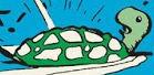 Links Hijinks Turtle