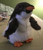Mumford the Gentoo Penguin Chick