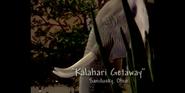 Kalahari Elephant
