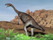Anchisaurus NT