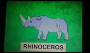 DTE Rhino
