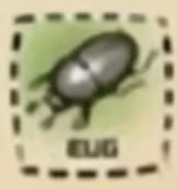 IMG bf bug