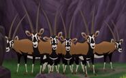 Oryx TLG